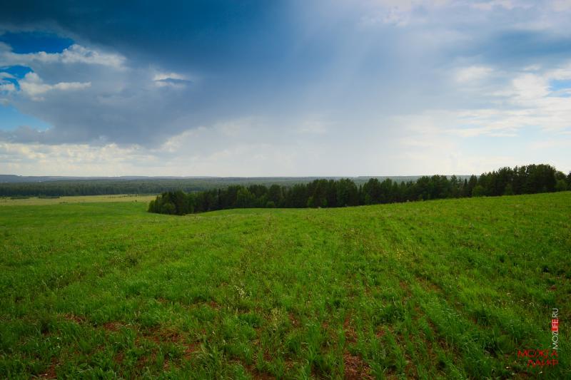 В РФ неимеют границ около 50% дачных и остальных участков