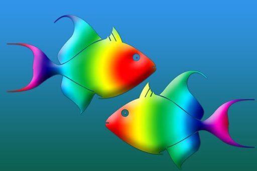 Мужчина – рыбы и женщина – рыбы: совместимость знаков